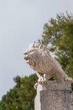 Statue de blanc de lion Photo libre de droits