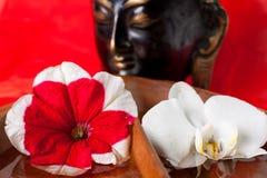 Statue de Bouddha avec des fleurs Photo libre de droits