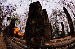 Statue de Bouddha en stationnement historique de Sukhothai Photos stock