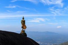 Statue de Bouddha sur la colline Images stock