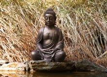 Statue de Bouddha sur le fond de nature Photo libre de droits