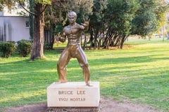 Statue de Bruce Lee Images libres de droits