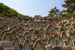 Statue de Buddhas Photos libres de droits