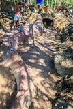 Statue de Chalawan et de Kraithong à l'avant de la caverne de Chalawan (Chalawan est le roi du crocodile dans littéraire thaïland photo stock