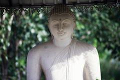 Statue de charge Bouddha images libres de droits