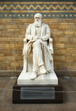 Statue de Charles Darwin Photos libres de droits