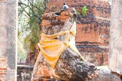 Statue de statue d'Ayutthaya Bouddha images libres de droits