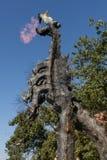 Statue de dragon de Wawel avec le feu, Cracovie, Pologne photographie stock libre de droits