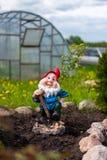 Statue de gnome dans le jardin Photographie stock libre de droits