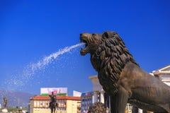 Statue de lion d'une fontaine à la place macédonienne Photographie stock libre de droits