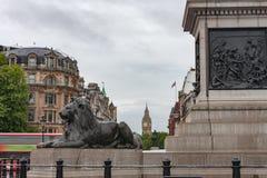 Statue de lion sur Trafalgar Square, sur le fond Big Ben dans Lon Image libre de droits