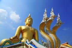 Statue de méditation de Bouddha Image stock