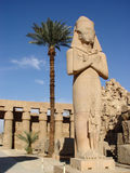 Statue de Ramses II et de Nefertari photo libre de droits