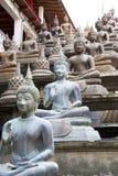 Statue del Buddha al tempiale di Gangaramaya Fotografie Stock