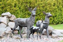 Statue der Rotwild im Park Männliche Rotwild, die seine Familie schützen Lizenzfreies Stockfoto