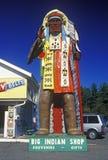 Statue des amerikanischen Ureinwohners im Kostüm am großen indischen Shop, Mohikaner-Spur, MA Stockfoto