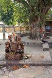 Statue des hindischen Gottes Ganesh nahe großem Baum Stockbild