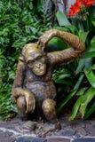 Statue des Schimpansen Lizenzfreie Stockbilder
