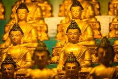 Statue di Buddha Sakyamuni Fotografie Stock