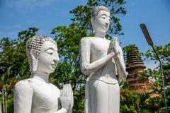 Statue di Buddha in si Ayutthaya di Phra Nakhon, a Wat Yai Chai MongkolMongkhon Tailandia, una del punto di riferimento storico f immagine stock libera da diritti
