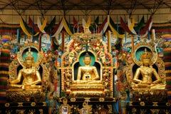 Statue di Buddha in un monastero tibetano Fotografia Stock Libera da Diritti