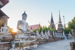 Statue di seduta state allineate di Buddha con rovina antica del tempio al wa Immagini Stock