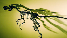 The Statue of dinosaur. This is the statue of old dinosaur in Japan Stock Photography