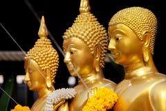 Statue diritte dorate di Buddha in una fila Immagini Stock