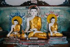 Statue dorate di Buddha in tempio alla pagoda di Shwedagon in Rangoon Fotografia Stock Libera da Diritti