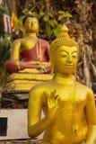 Statue dorate di Buddha in varie pose fotografia stock