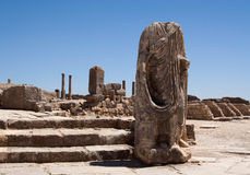 Statue of Dougga Stock Images