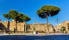 Statue of emperor Nerva in Rome. Italy Royalty Free Stock Images