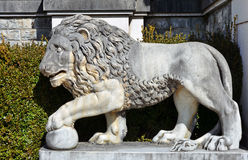 Statue en pierre de lion Photographie stock libre de droits