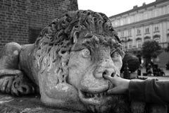 Statue en pierre de lion avec le doigt dans la photo noire et blanche de nez Image stock