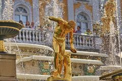 The statue of the Faun Florence, 1800 a copy from the antique original of II-I century BC Florence. A satyr with a leg drum. The Great Cascade in Peterhof royalty free stock image