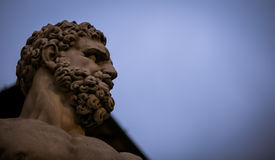Statue florence italy. Bearded statue in the Piazza della Signoria Florence Italy Royalty Free Stock Image