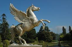 Statue flying horse Stock Photo