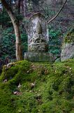 Statue at forest in Yamadera, Japan. Guan Yin statue at sacred forest in Yamadera, Japan. Yamadera is a scenic temple located in the mountains northeast of Royalty Free Stock Photography