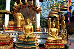 Statue of Golden Buddhas Stock Photos