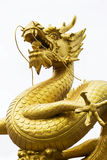 Statue of golden dragon Royalty Free Stock Images