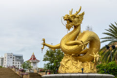 Statue of golden dragon in the Queen Sirikit Public Park in Phuket Stock Photography