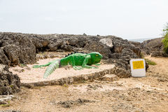 Statue of Green Lizard on Sand by Black Coral Stock Photos