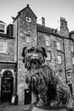 A statue of Greyfriars Bobby in Edinburgh. EDINBURGH, SCOTLAND -DEC 10: A statue of Greyfriars Bobby in Edinburgh on December 10, 2015. Bobby was a dog who Royalty Free Stock Photography