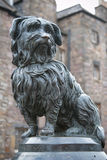 Statue of Greyfriars Bobby, a famous Terrier. The statue of Greyfriars Bobby, a famous Terrier, in front of the Greyfriars cemetery on the George IV Bridge in Stock Photo