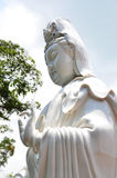 Statue of Guanyin Royalty Free Stock Photo