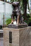 Statue of Hachiko in Tokyo, a symbol of loyalty Royalty Free Stock Image