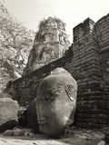 Statue head in Thailand temple ruins Ayutthaya Stock Image