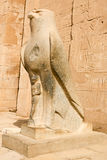 Statue of Horus at Edfu royalty free stock photos