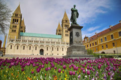Statue of Ignac Szepesy and Basilica of St. Peter & St. Paul, Pe. Cs Cathedral in Hungary stock photo