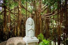 Statue of indhuism and buddhism prayer near banyan tree Stock Photo